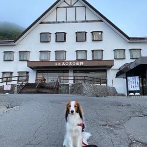 久し振りのくるま旅〜北湯沢湯元ホロホロ山荘
