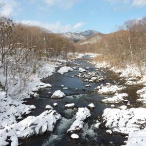 わが家の裏庭の「雪景色」です ♪