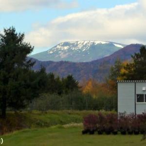 「無意根山 (ムイネヤマ)」が 初冠雪しました ♪