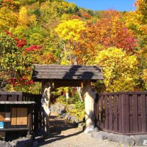 北海道の紅葉 第8弾 「心の里 定山」です ♪