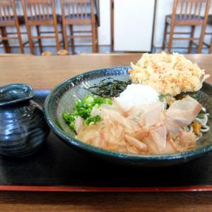山菜おろしそば+かきあげ/長生うどん新城店(新城市)