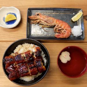 鰻丼と赤えび塩焼き/ひもの亭(名東図書館)