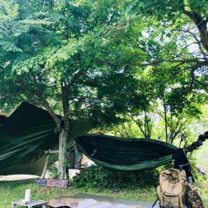 真夏キャンプと真冬キャンプどっちが良い⁉️