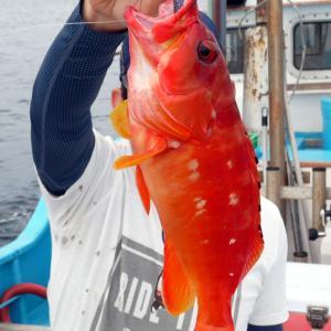 一つテンヤで予想外の高級魚連発。