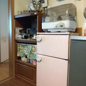 冷蔵庫を買い替えました