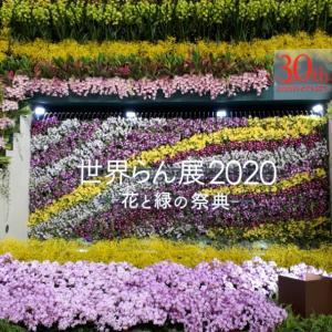 世界らん展~花とみどりの祭典