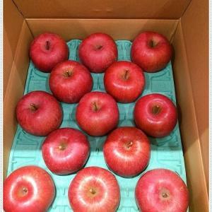 頂き物*りんごとラフランス*リンゴと言えば、愛犬、琥太楼と琥次楼を思い出す。