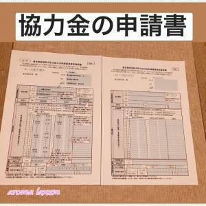 6月人気ランキング記事★BEST5★東京都感染拡大防止協力金*持続化給付金は・・・・