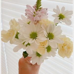お花のある暮らし・チワワの琥太楼と琥次楼のためにお花買ってきました。9月は、琥太楼の2年忌