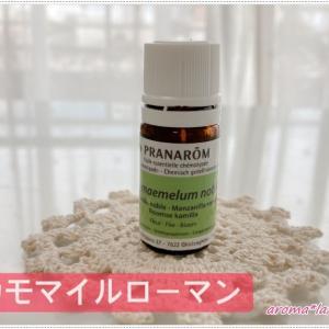 カモマイルローマン Chamaemelum nobile  プラナロム精油 pranarom