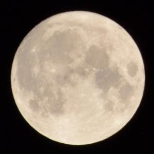 満月の時は、痒くなるの? 満月はデトックスとも言われるから、不要なものを出してるの?