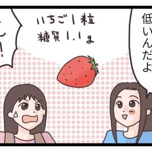 糖質制限中にいちごは食べていい?イチゴ一粒当りの糖質量を調べてみた