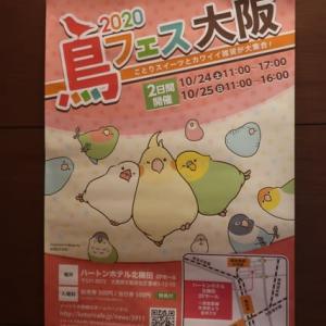 2020 鳥フェス 大阪