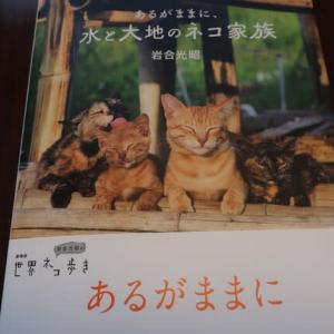 岩合さん&石田ゆり子さんの本