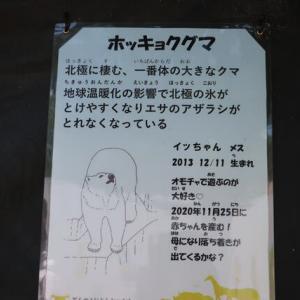 天王寺動物園/イッちゃん&ホウちゃん