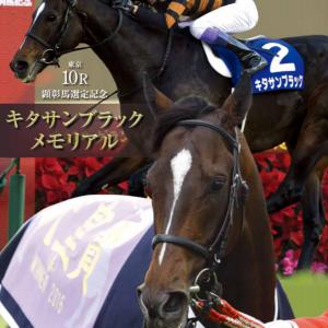 レーシングプログラムが教えてくれた…天皇賞秋は顕彰馬の仔が共演