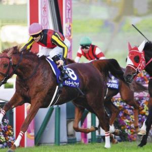 阪神2200mエリザベス女王杯は宝塚記念が教えてくれた