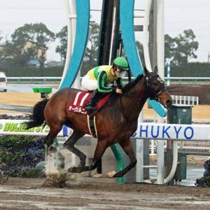 東海SはオーヴェルニュV川田将雅騎手JRA2勝も重賞連覇で穴埋め