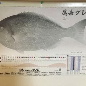 釣具屋に釣られてセールに行くが、カレンダーを釣り損ねるみたいな(;・∀・)