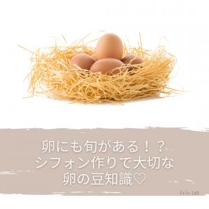 卵にも旬がある!?♡夏の卵や新鮮な卵と古い卵♡強いメレンゲのためには♡