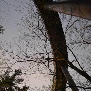 石川県 七尾市 別所岳サービスエリア のと里山海道 パーキングエリア 展望台 やぎ 山海市場