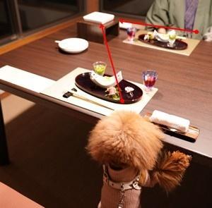 レジーナリゾート伊豆無鄰の夕食・伊豆「ひなまつり旅行」♪⑥