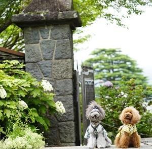箱根強羅公園・神奈川県「ララ6才ミク3才お誕生日旅行」③