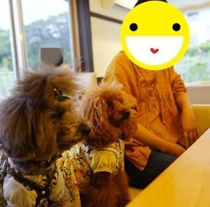 ホテル凛香の夕食・神奈川県「ララ6才ミク3才お誕生日旅行」⑦