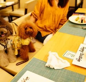 ホテル凛香の夕食②・神奈川県「ララ6才ミク3才お誕生日旅行」⑧