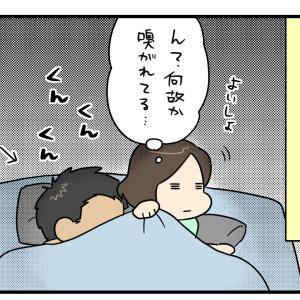 寝る時にニオイを嗅いできた理由