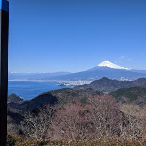 ロープウェイで大パノラマ 富士見テラス