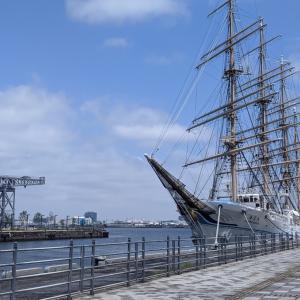 横浜港 客船&帆船&HAMMER HEAD