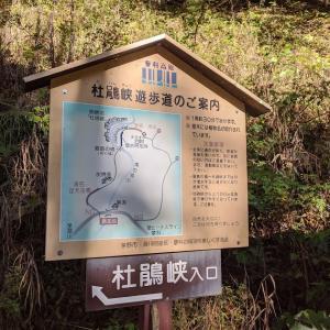 ぼくらはへっぴり腰  ~蓼科の杜鵑峡~