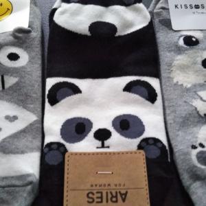 パンダの靴下とととろ?