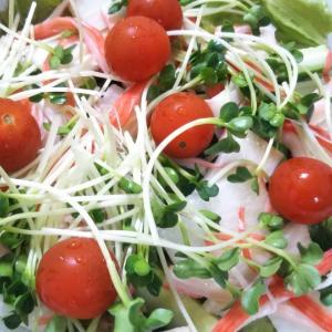贅沢山芋のカニかまサラダ