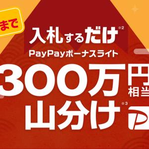 本日まで!! 入札だけで、PayPayボーナスライト300万円相当が山分けされますよ~♪