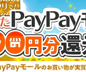 PayPayモール2000円分還元キャンペーン、アメフリで帰ってきてますよ~♪