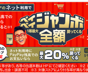 PayPay、抽選で全額還元&最大20%還元や、花王商品最大40%還元等、キャンペーン色々始まってます。