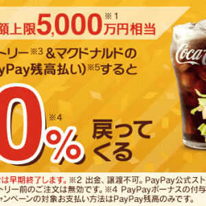 先着。マクドナルドモバイルオーダー、PayPay残高払いで最大20%還元!! 8/6まで。