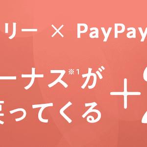 LOHACO、PayPay決済で20%還元!! 9/26まで。