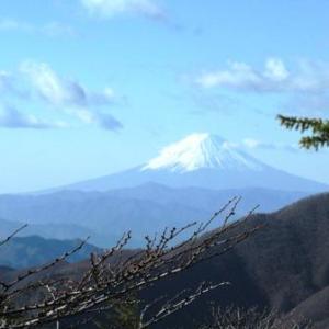 富士山展望の高川山と吉田屋うどん
