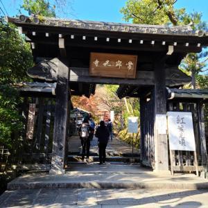 京都一人旅(嵐山寺院編)