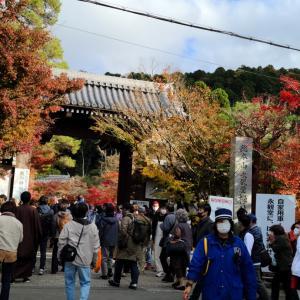 京都一人旅(永観堂、南禅寺編)