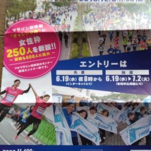 第33回青太マラソン2019パンフ届いた(。・ω・。)