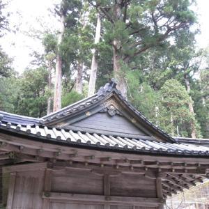 宿泊学習思い出巡り旅 (二荒山神社 2)