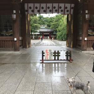 大國魂神社へ行きました。