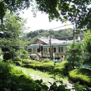 北鎌倉  円覚寺  1