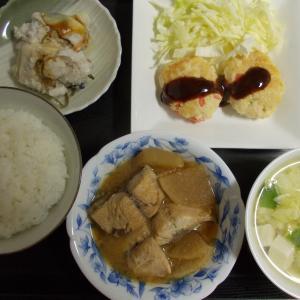 サバ大根の味噌煮 鶏肉豆腐ハンバーグ