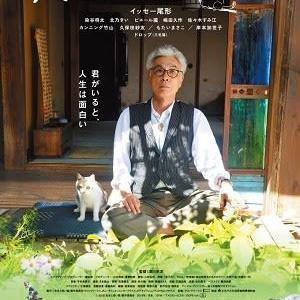 『先生と迷い猫』