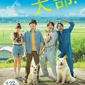 【インタビュー】映画『犬部!』大原櫻子